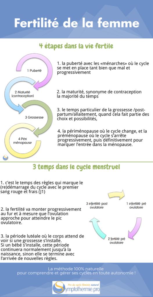 fertilite cyclique femme
