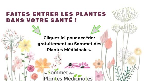 Sommet des Plantes Médicinales